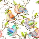 Seamless pattern of the watercolor birds on the branches, hand drawn on a white background Stock Images