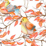 Seamless pattern of the watercolor birds on the branches with red leaves, hand drawn on a white background Stock Image