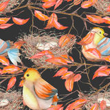 Seamless pattern of the watercolor birds and nests on the branches with red leaves, hand drawn on a dark background Royalty Free Stock Photo