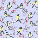Seamless pattern with watercolor birds sitting on a branches with flowers stock illustration