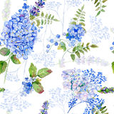 Seamless pattern. Watercolor blue hydrangea, lavender, currant. Stock Image