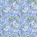 Seamless pattern. Watercolor blue hydrangea, lavender, currant. Royalty Free Stock Photography