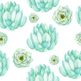 A seamless pattern with the watercolor blue and mint succulents. Hand-drawn on a white background Royalty Free Stock Photography
