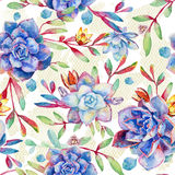 Seamless pattern with watercolor blue succulents. Royalty Free Stock Photos
