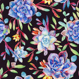 Seamless pattern with watercolor blue succulents. Stock Images