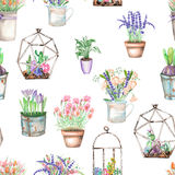 A seamless pattern with watercolor bouquets of wildflowers in a rustic pots and florariums with succulents Stock Images