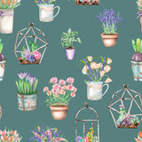 A seamless pattern with watercolor bouquets of wildflowers in a rustic pots and florariums with succulents Stock Photography