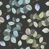 Seamless pattern with the watercolor branches with blue and grey leaves, hand painted on a dark background Stock Photo