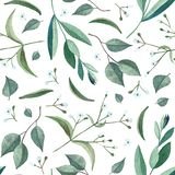 Seamless pattern with watercolor branches and flowers royalty free stock photography