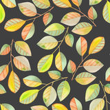 Seamless pattern with the watercolor branches with green and yellow leaves, hand painted on a dark background Stock Photography