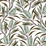 Seamless pattern with watercolor branches royalty free illustration
