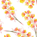 Seamless pattern with the watercolor branches with the orange, yellow and red Delphinium flowers Stock Photography