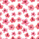 Seamless Pattern of Watercolor Bright Red Flowers. Seamless Pattern of Watercolor Wild Red Flowers Royalty Free Stock Photos