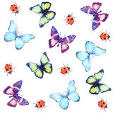 Seamless Pattern Watercolor Butterflies and Ladybug. Butterflies and ladybug. Hand drawn watercolor seamless pattern white Stock Image