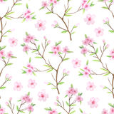 Seamless pattern with watercolor cherry blossoms stock illustration