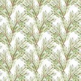 Seamless pattern. Watercolor Christmas tree branches. Hand painted texture with fir-needle natural elements isolated on. White background. Xmas paper Royalty Free Stock Photos