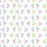 Seamless pattern of watercolor colibri Royalty Free Stock Image