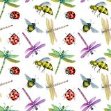 Seamless pattern with watercolor colorful dragonflies, bees and ladybugs. Hand painted on a white background Stock Photo