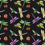 Seamless pattern with watercolor colorful dragonflies, bees and ladybugs. Hand painted on a dark background Stock Photo