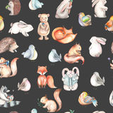Seamless pattern with watercolor cute forest animals Stock Image
