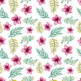 Seamless Pattern of Watercolor Deep Pink Flowers Royalty Free Stock Photos