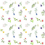 Seamless pattern with watercolor doodle plants and flowers Stock Photography