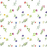 Seamless pattern with watercolor doodle plants and flowers Royalty Free Stock Photo