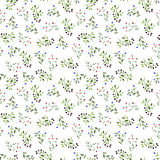 Seamless pattern with watercolor doodle plants Stock Images