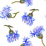 Seamless pattern with watercolor drawing cornflowers Royalty Free Stock Image
