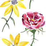 Seamless pattern with watercolor drawing flower Stock Images