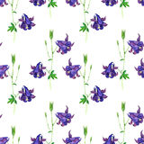 Seamless pattern with watercolor drawing flowers Stock Photography