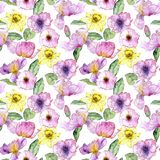 Seamless pattern with flowers. Seamless pattern with watercolor drawing flowers at white background, hand drawn illustration stock images