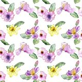 Seamless pattern with flowers. Seamless pattern with watercolor drawing flowers at white background, hand drawn illustration stock photography