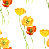 Seamless pattern with watercolor drawing flowers of yellow poppies Royalty Free Stock Photo