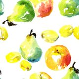 Seamless pattern with watercolor drawing fruits Stock Images