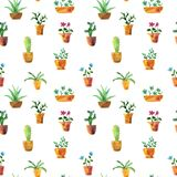Seamless pattern with watercolor drawing home plants. Seamless pattern with watercolor drawing house plants, cacti and succulents, hand drawn illustration Stock Photo