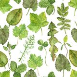 Seamless pattern with watercolor drawing leaves Stock Photo