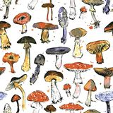 Seamless pattern with watercolor drawing mushrooms Royalty Free Stock Photos
