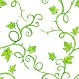 Seamless pattern with watercolor drawing stems and leaves Royalty Free Stock Photography