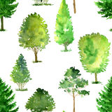 Seamless pattern with watercolor drawing trees Stock Photography