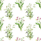 Seamless pattern with watercolor drawing wild flowers. Seamless pattern with watercolor drawing bouquets of wild flowers, painted field plants, botanical Stock Photo