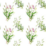 Seamless pattern with watercolor drawing wild flowers. Seamless pattern with watercolor drawing bouquets of wild flowers, painted field plants, botanical Stock Image