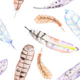 A seamless pattern with the watercolor feathers Royalty Free Stock Photos