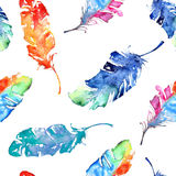 Seamless pattern with watercolor feathers Royalty Free Stock Image