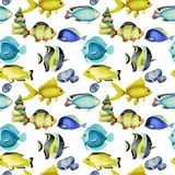 Seamless pattern with watercolor fish surgeon, goldfishes and other oceanic fishes. Hand painted on a white background stock illustration