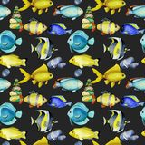 Seamless pattern with watercolor fish surgeon, goldfishes and other oceanic fishes. Hand painted on a dark background vector illustration