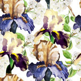 Seamless pattern with watercolor flowers. Iris Stock Photography