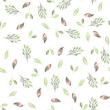 Seamless pattern with watercolor flowers, leaves and branches, wedding decoration Royalty Free Stock Photo