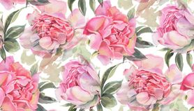 Seamless pattern with watercolor flowers.  Peonies Stock Images