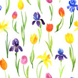 Seamless pattern with watercolor flowers Royalty Free Stock Photos